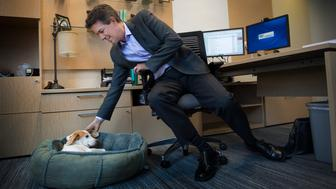 WASHINGTON, DC  - AUGUST 31:   U.S. Humane Society CEO Wayne Pacelle and his dog Lily at work in Washington, DC on August 31, 2016.   Studies have found that having pets in your life can make you more emotionally and in some cases more physically healthy. (Photo by Linda Davidson / The Washington Post via Getty Images)