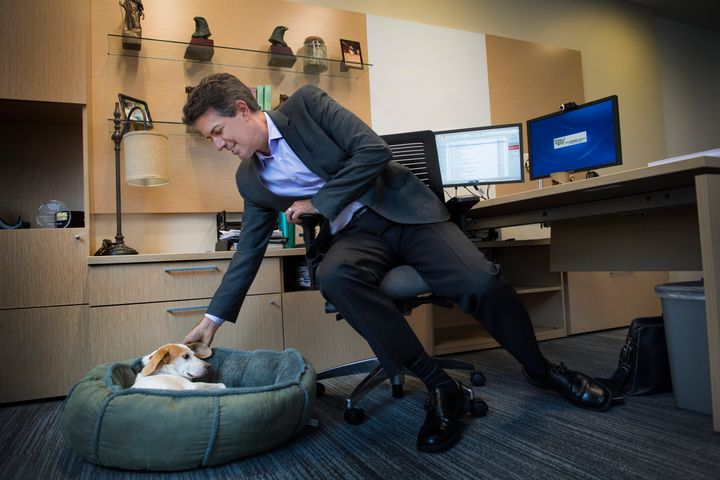 Wayne Pacelle and his dog Lily at his Human Society of the United States office in Washington, D.C., in 2016.