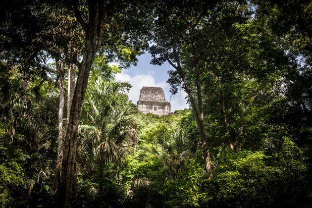Επιστήμονες ανακάλυψαν μια αρχαία πόλη των Μάγια κρυμμένη στη ζούγκλα της