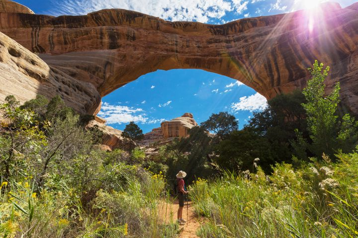 Sipapu Bridge in the Natural Bridges National Monument.