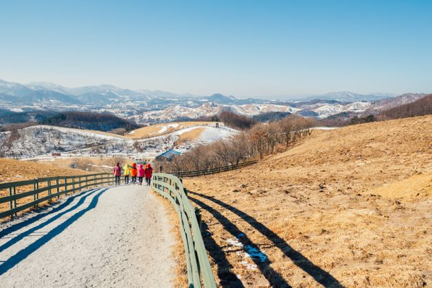 Many South Koreansvisit campgrounds to enjoy time in