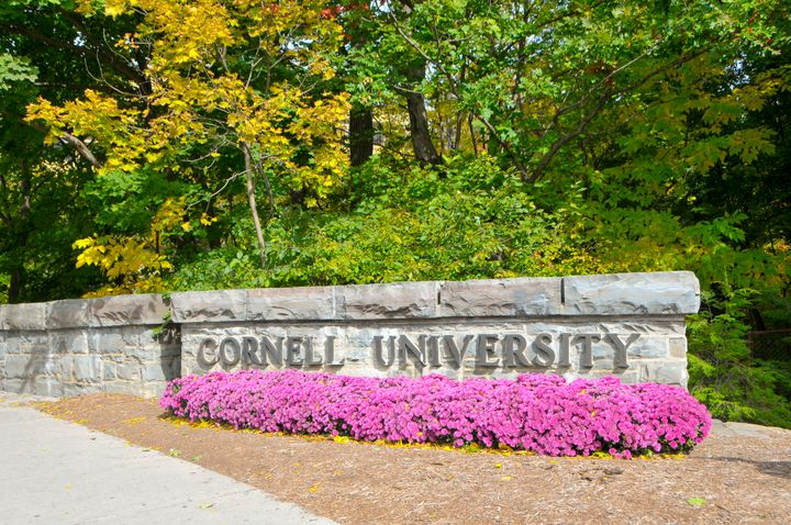 The Zeta Beta Tau chapter at Cornell University has been placed on probation for two years.