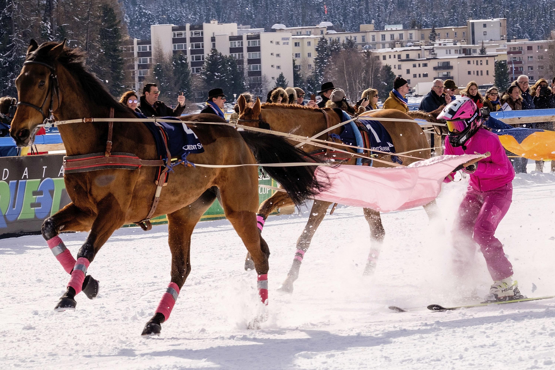 A skijoring race in St.Moritz in February 2017.