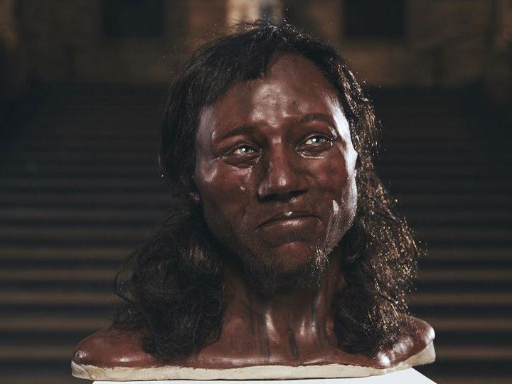 Facial reconstruction of Cheddar Man, who had blue eyes, dark skin and dark, curly hair.