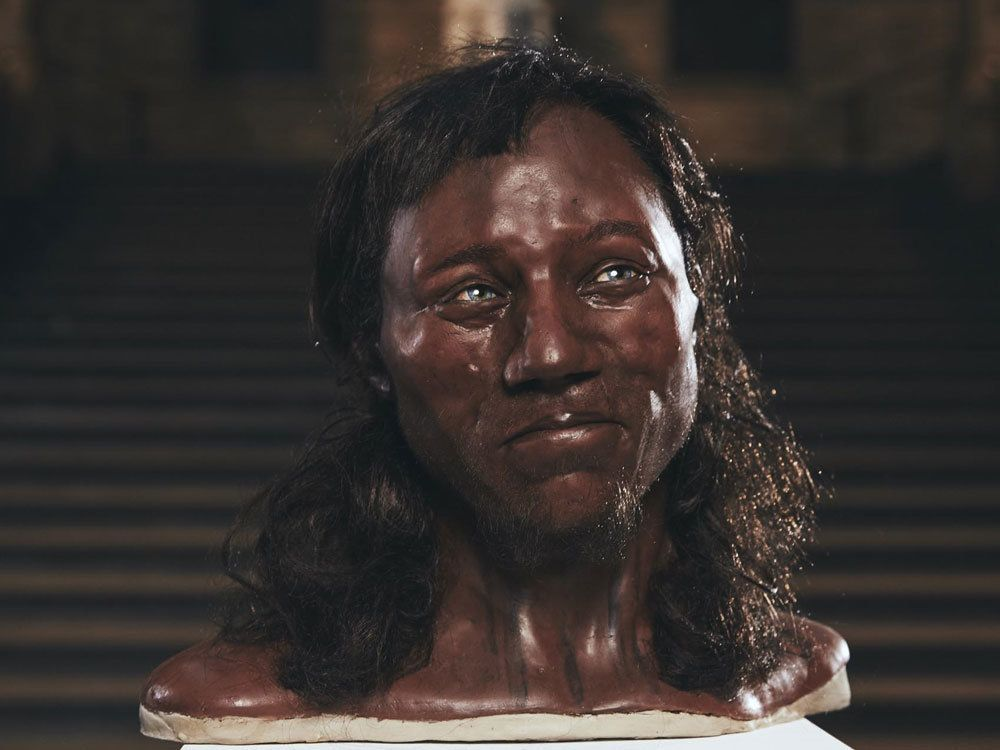 Facial reconstruction of Cheddar Man, who had blue eyes, dark skin and dark, curly hair.