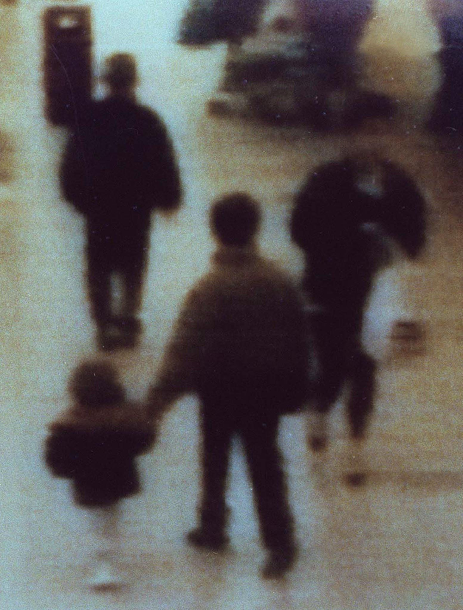 <strong>CCTV footage showing James being led away in the shopping centre he was abducted from </strong>