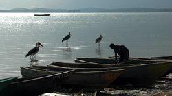 Ein Grundeinkommens-Experiment in Afrika könnte die Entwicklungshilfe