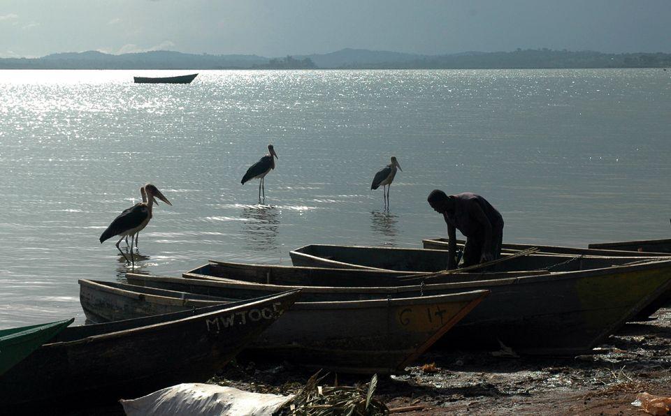 Fischer am Viktoriasee