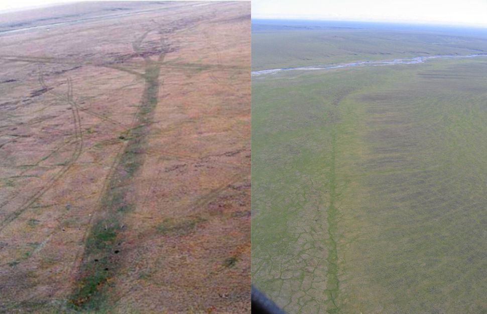 Aerial images of a seismic trail made in the winter of 1985 in the 1002 area of the Arctic National Wildlife Refuge,&nbs