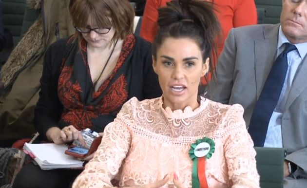 Katie appeared in the House Of Commons earlier this