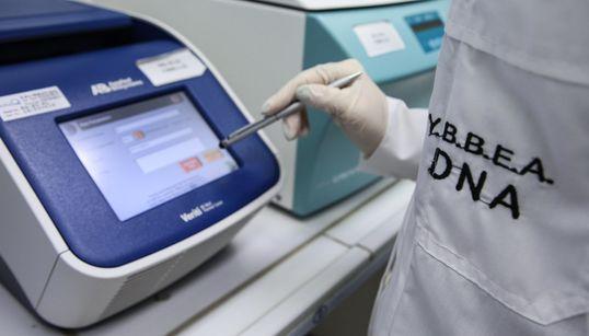 Τι συμβαίνει στα εργαστήρια ανάλυσης DNA. 4 αξιωματικοί της ΕΛΑΣ μας απαντούν για όλα όσα θέλουμε να