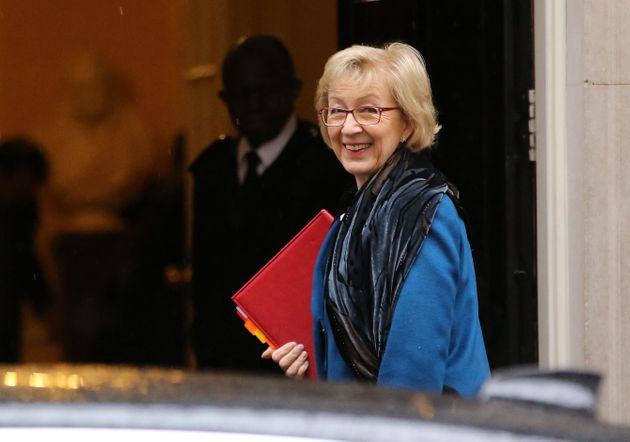 Tory Cabinet Minister Andrea Leadsom Reveals 'Despicable' Death