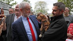 Corbyn Animal Welfare Plan To Help Pet Owners With Vet