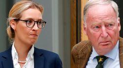 Rechtsanwalt klärt auf: Darf ich AfD-Politiker als Nazis