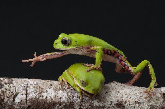 위키가 뽑은 '세계의 자연' 사진
