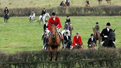 Unlucky For Hunts As Hunting Ban Turns