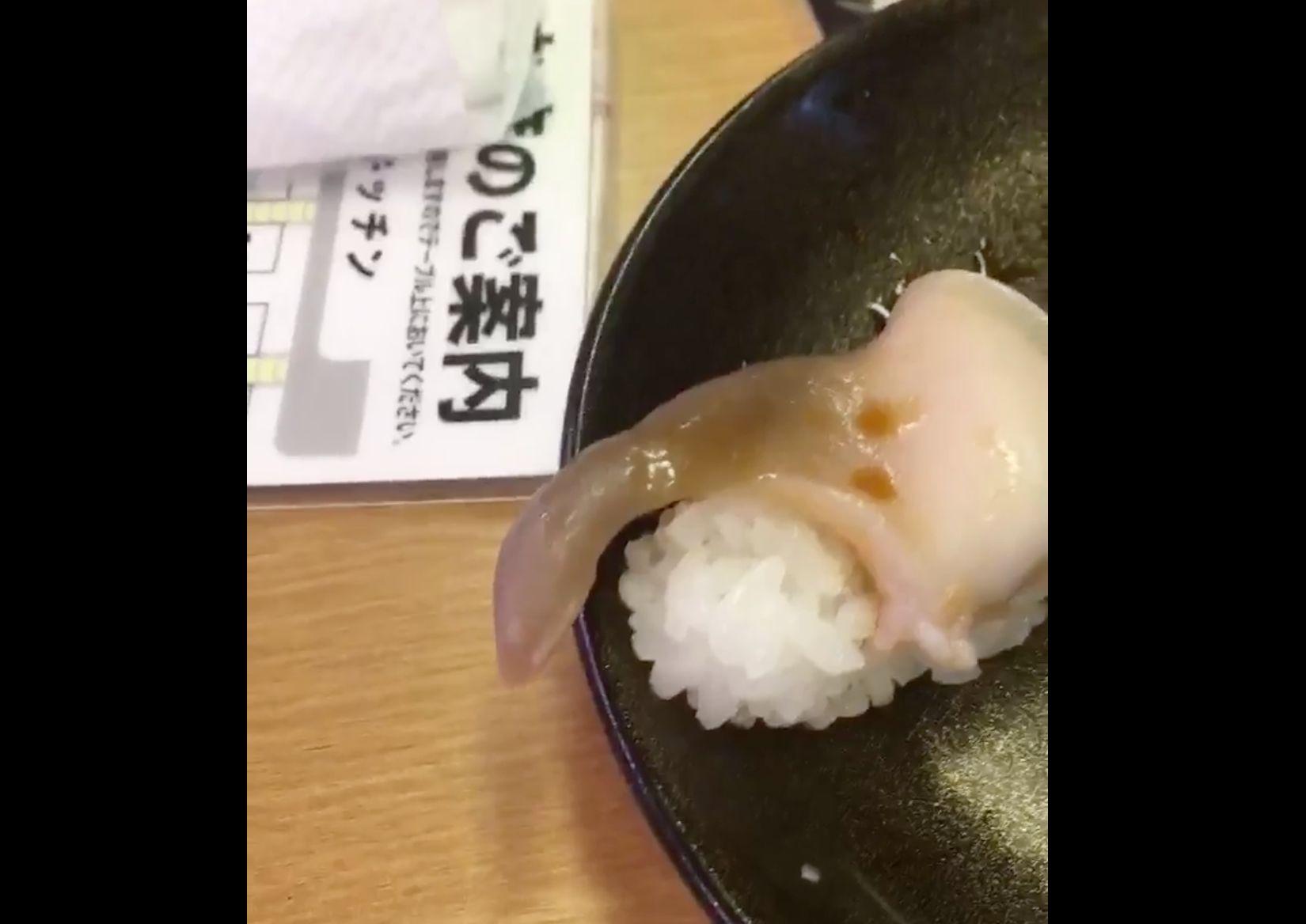 초밥을 먹으려고 했더니, 조개가 움직이기