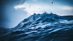 Νεκρός άνδρας στη θαλάσσια περιοχή της Νέας
