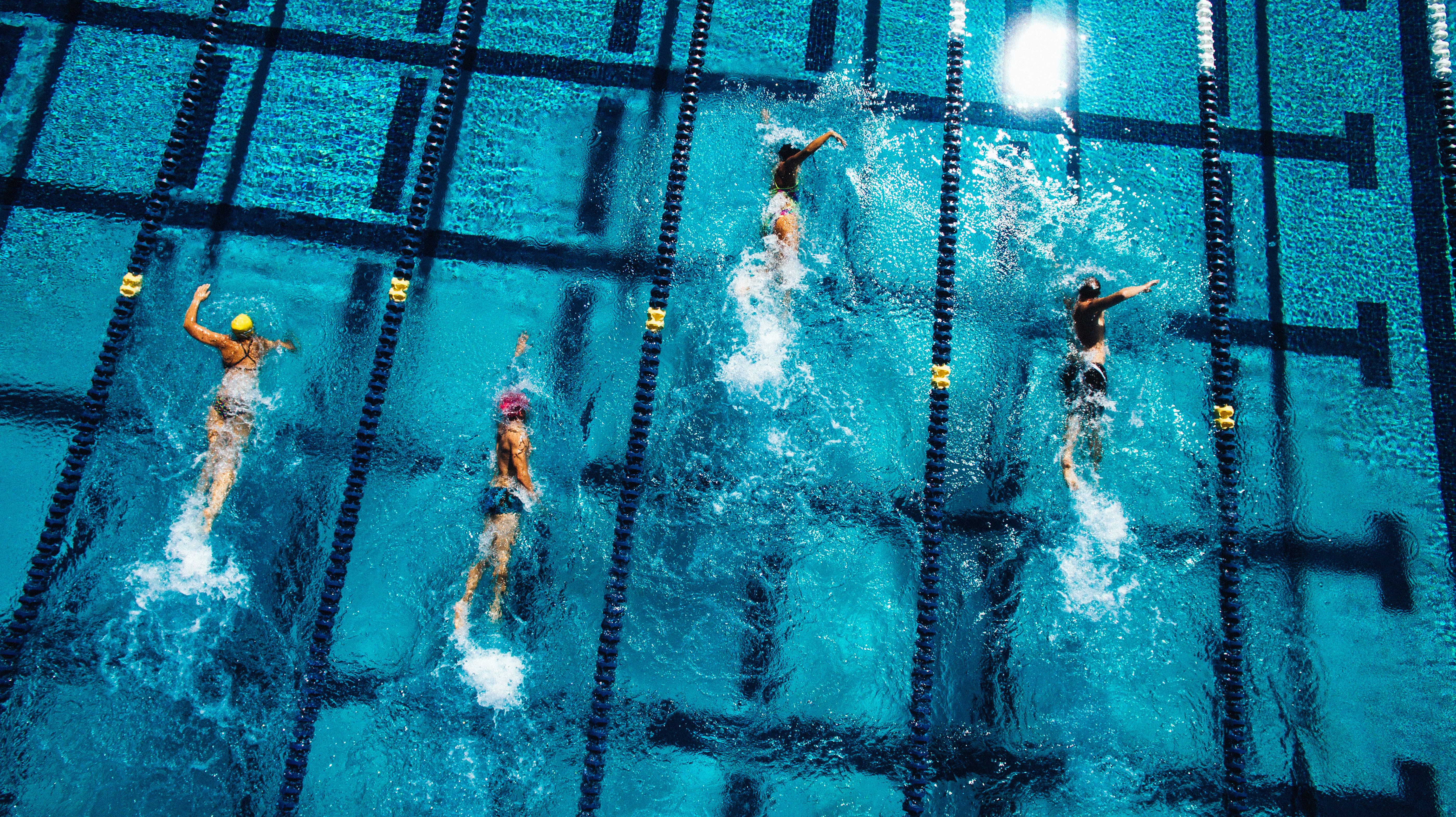 Stock photo of swimmers in pool.