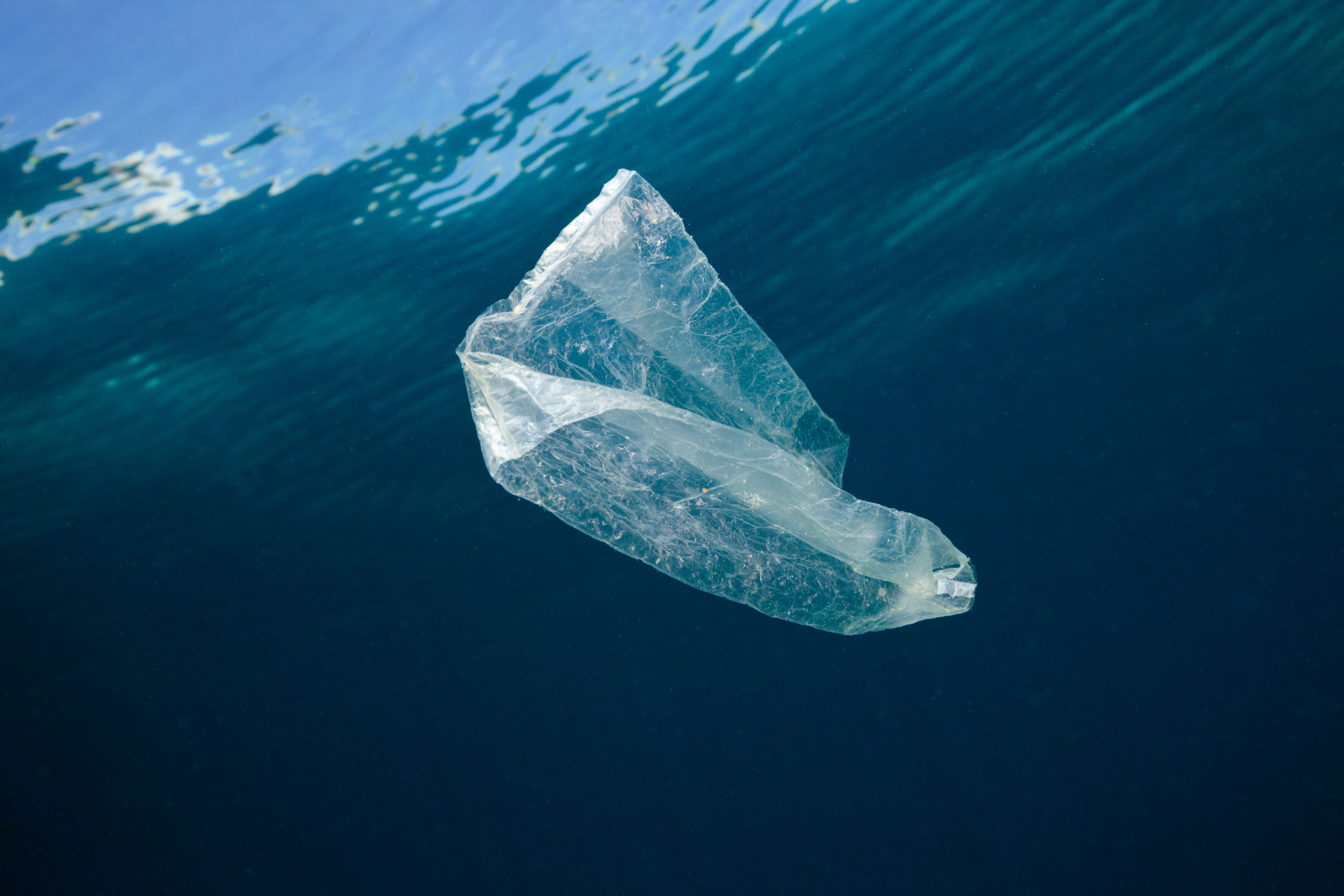 Ocean Plastic Pollution Isn't Just Immoral, It's