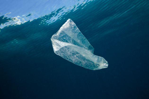 Plastic bag adrift in