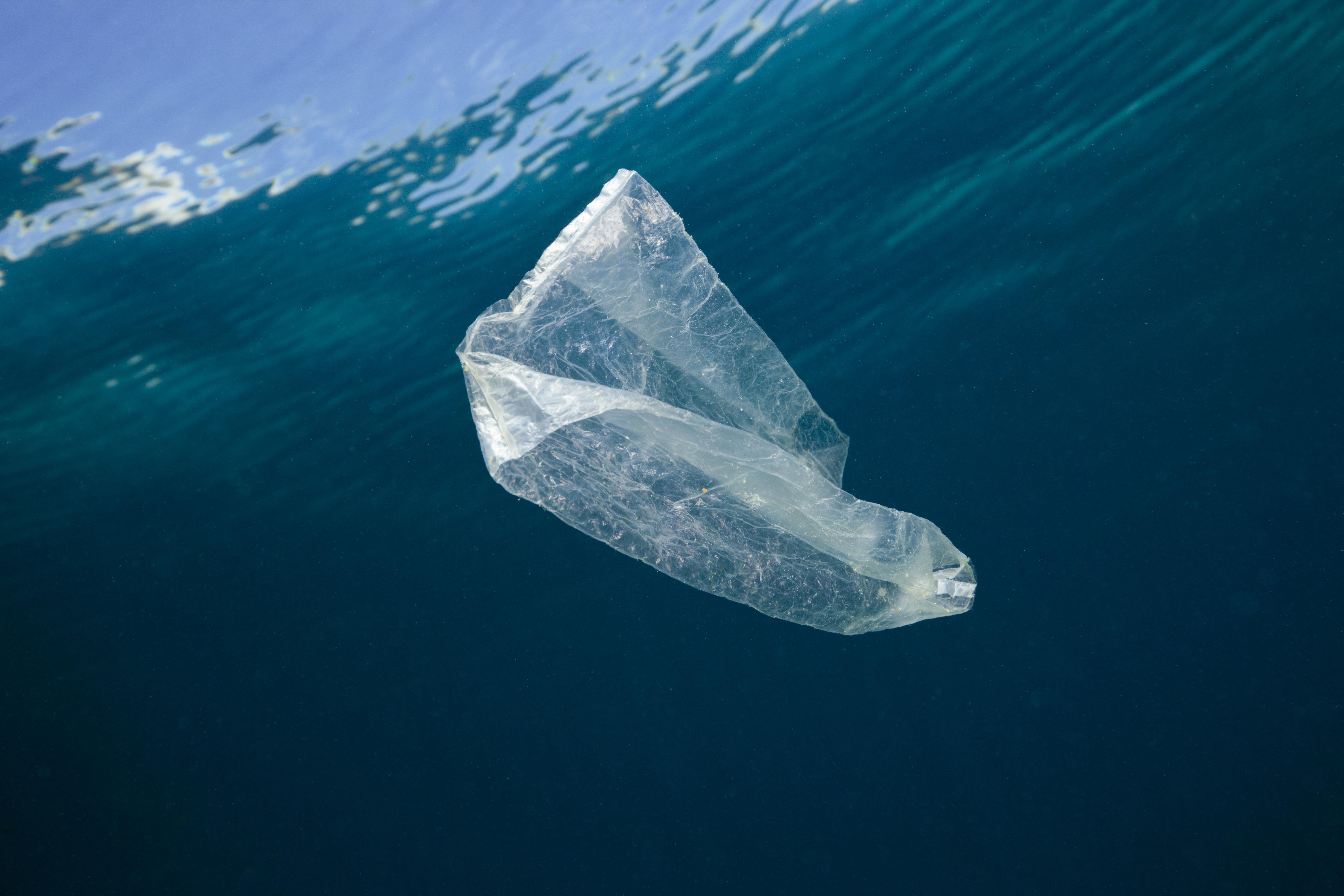 Plastic bag adrift in ocean.