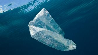 (GERMANY OUT)   Plastic Bag adrift in Ocean, Indo Pacific   (Photo by Reinhard Dirscherl\ullstein bild via Getty Images)