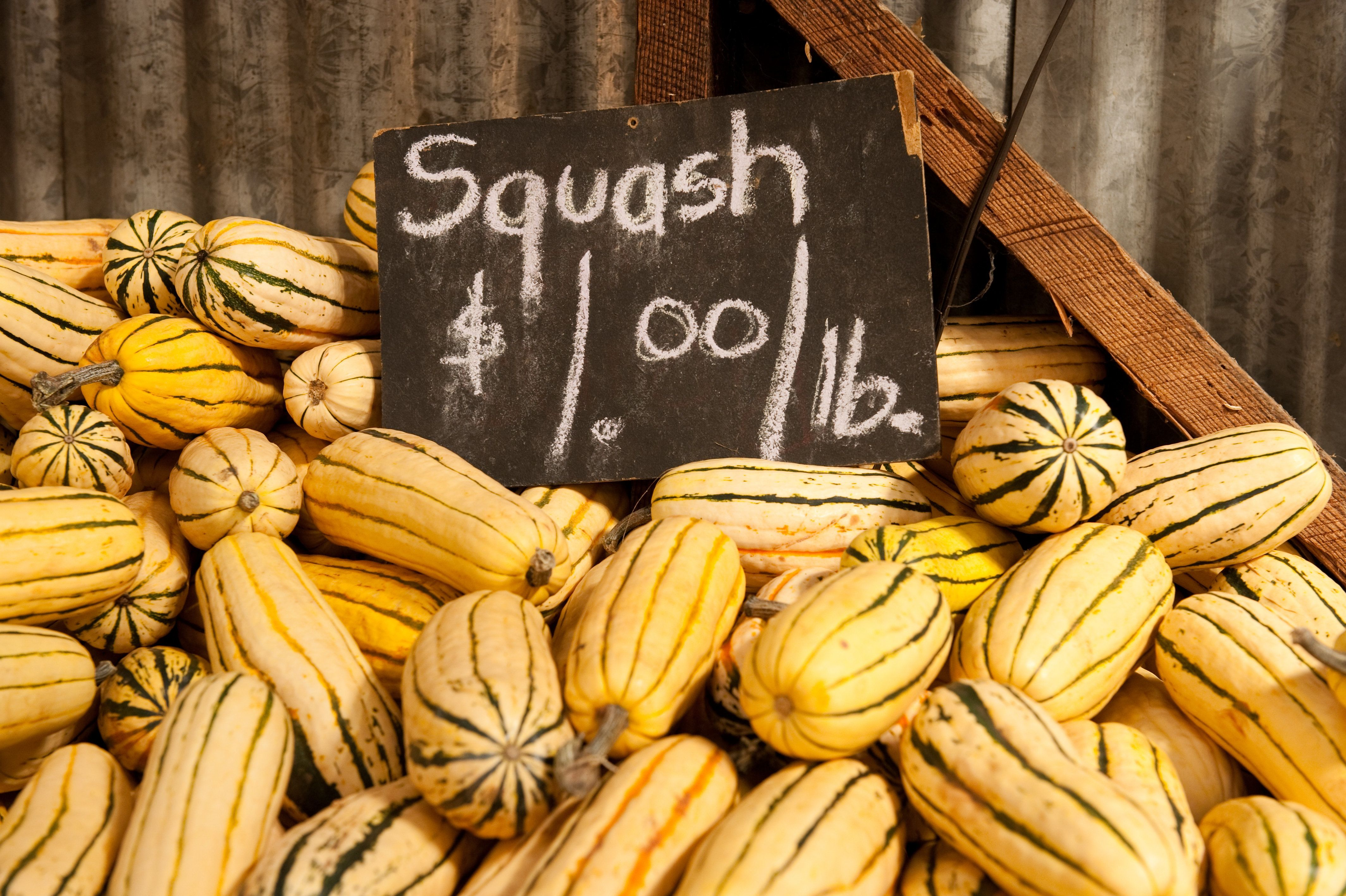 Squash for sale at a farmers market