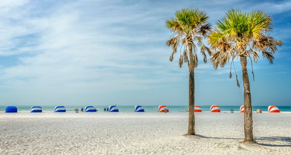 """<a href=""""https://www.tripadvisor.com/Attraction_Review-g34141-d117476-Reviews-Clearwater_Beach-Clearwater_Florida.html"""" targe"""