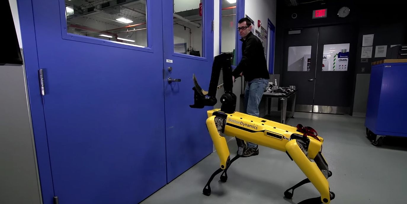 Watching A Human Fight A Robot Dog Is Pure 'Black