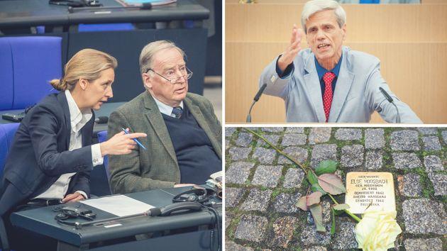 Die AfD-Fraktionschefs Alice Weide und Alexander Gauland (links). Wolfgang Gedeon (rechts oben) und ein...