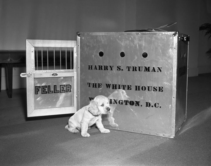 Feller poses for the first time at the White House in 1947.