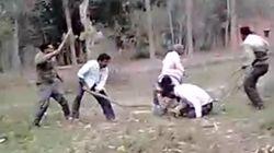5 Männer prügeln auf einen Bauern ein - doch sie rechnen nicht mit seiner