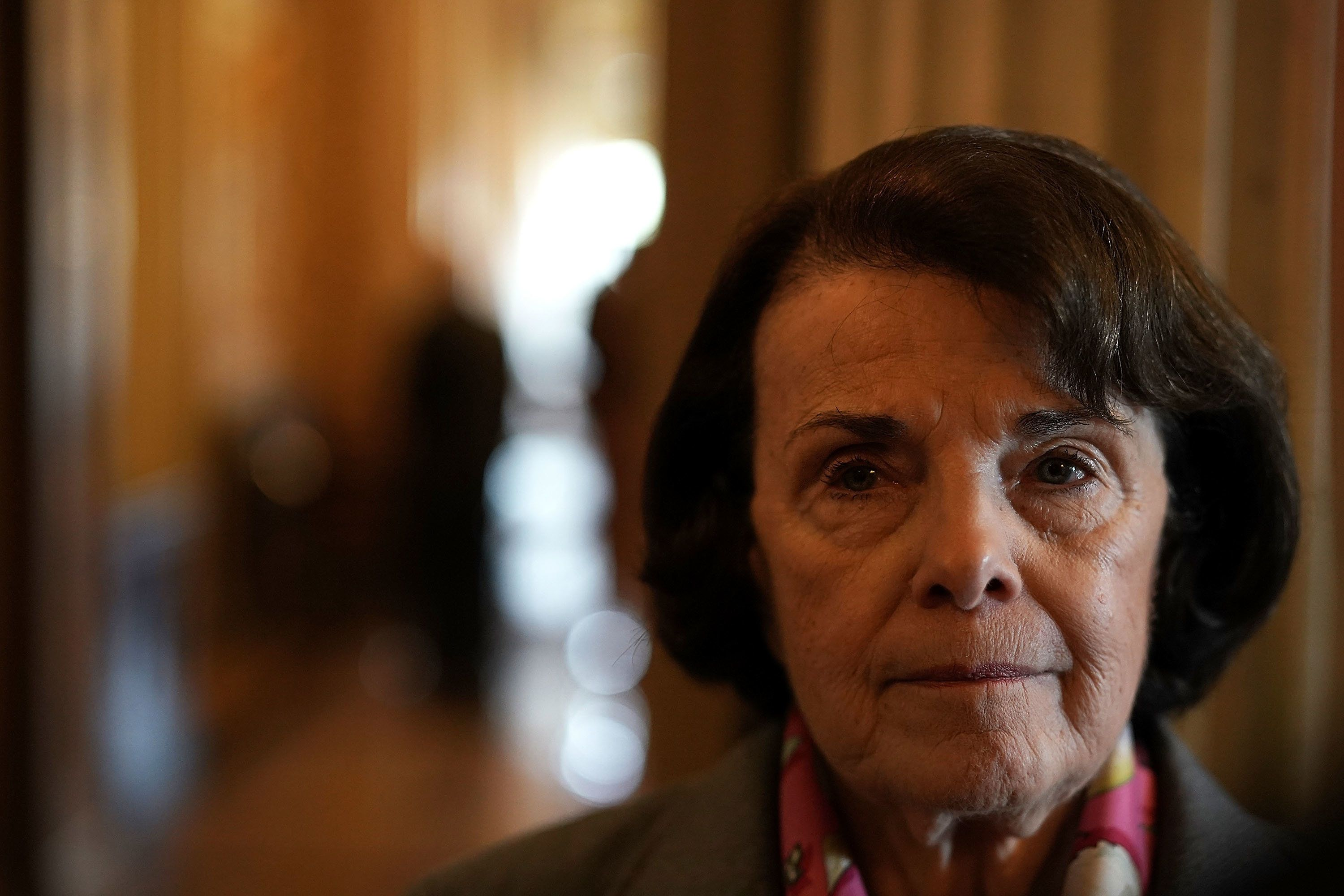 WASHINGTON, DC - FEBRUARY 15:  U.S. Sen. Dianne Feinstein (D-CA) speaks to members of the media prior to a number of votes at the Capitol February 15, 2018 in Washington, DC. A bipartisan DACA\boarder security deal has failed in the Senate, casting an uncertain future for the immigration bill.  (Photo by Alex Wong/Getty Images)