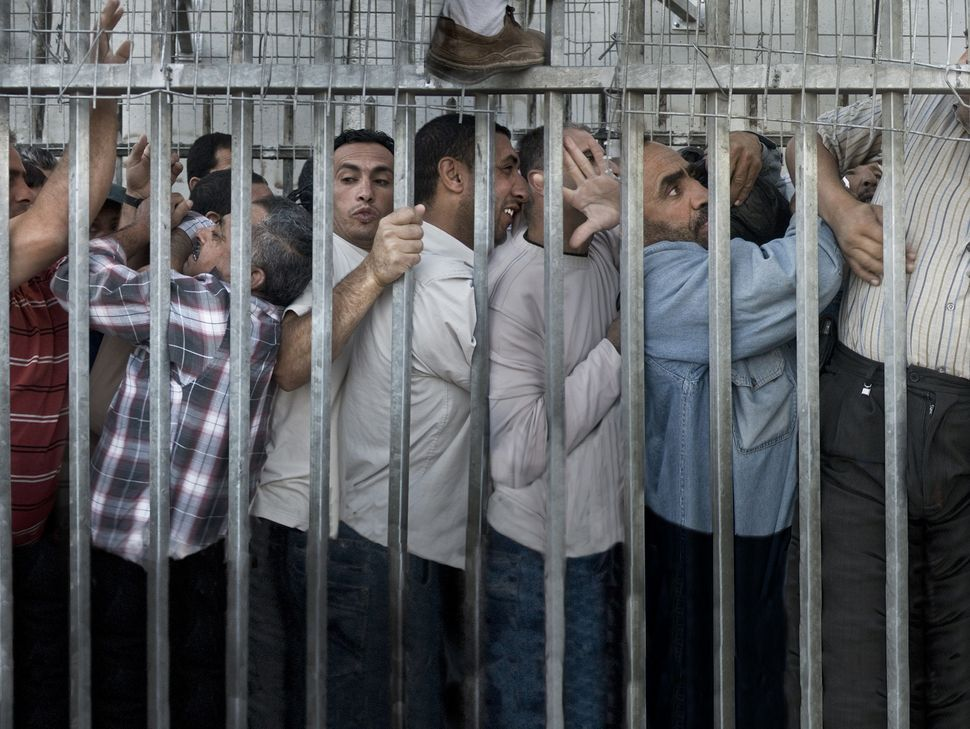 Every day, before sunset, thousands of Palestinian workers spend between two and four hours clumped together t