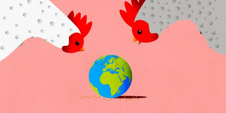 Humans now eat so much chicken, the birds' bones serve as key markers in the fossil record of the Anthropocene. But that only