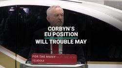 Labour's EU Position Spells Trouble For