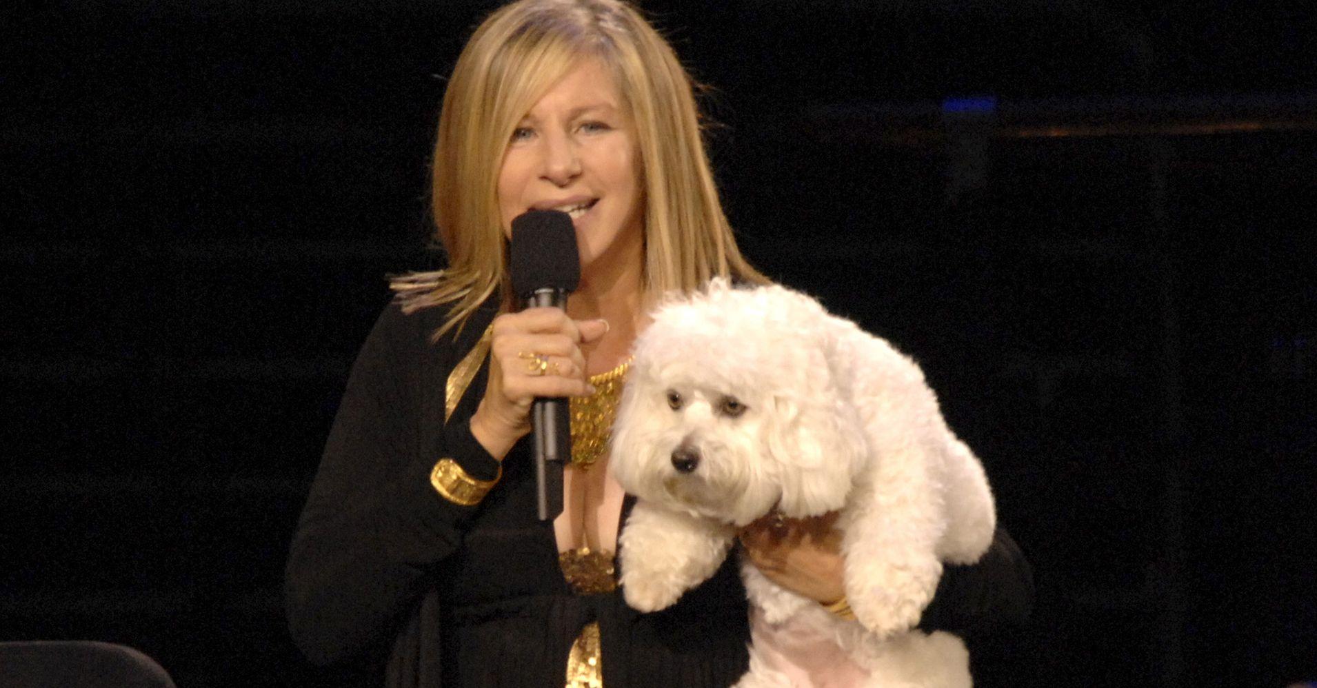 Barbra Streisand Had Her Dog, Samantha, Cloned Twice