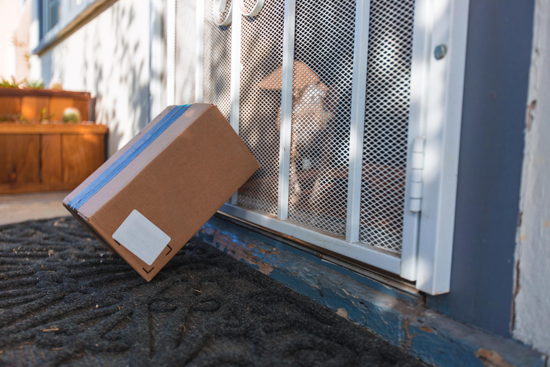 Botin will Paket ausliefern – als sie die Empfänger sieht, geht sie wieder