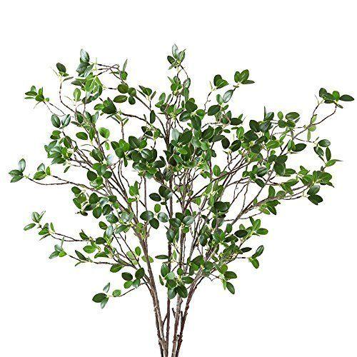 "Get them <a href=""https://www.amazon.com/Htmeing-Artificial-Eucalytus-Branches-Decoration/dp/B0752VGV5D/ref=sr_1_3?amp=&ie=UT"