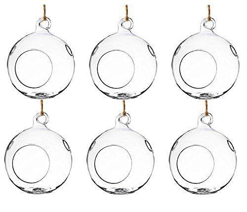 "Get them <a href=""https://www.amazon.com/Round-Glass-Decorative-Hanging-Terrarium/dp/B0736JSMM8/ref=sr_1_5?amp=&ie=UTF8&keywo"