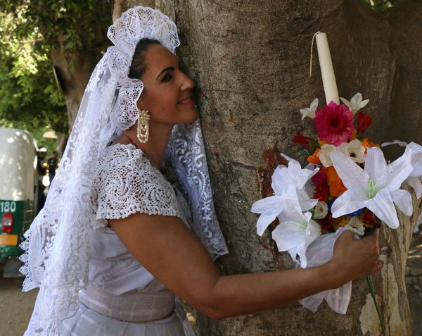 """Marry a tree"" began as a ritual of giving thanks to Mother Earth carried out by the organization ""Bedani,"" and later gave wa"