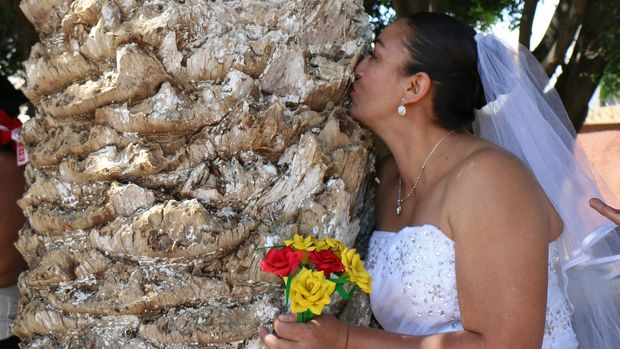 An environmental activist kisses a tree during an event called 'Marry a Tree' in the community of San Jacinto Amilpas, Oaxaca State, Mexico, on February 25, 2018. 'Marry a tree' began as a ritual of giving thanks to Mother Earth carried out by the organization 'Bedani', and later gave way to a symbolic wedding based on Inca customs where women and men 'marry' trees in a rite led by Peruvian actor and environmentalist Richard Torres. / AFP PHOTO / Patricia CASTELLANOS        (Photo credit should read PATRICIA CASTELLANOS/AFP/Getty Images)