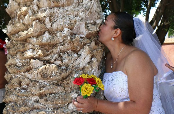 "An environmental activist kisses a tree during an event called ""Marry a Tree"" in the community of San Jacinto Amilpas, Oaxaca"
