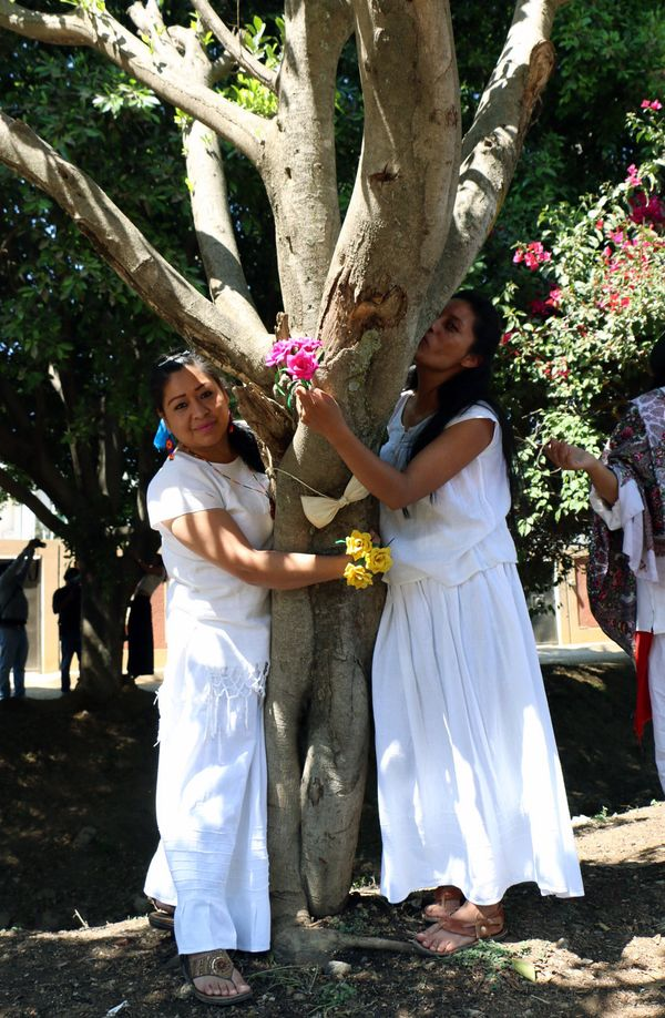 Environmental activists hug and kiss a tree during the event.