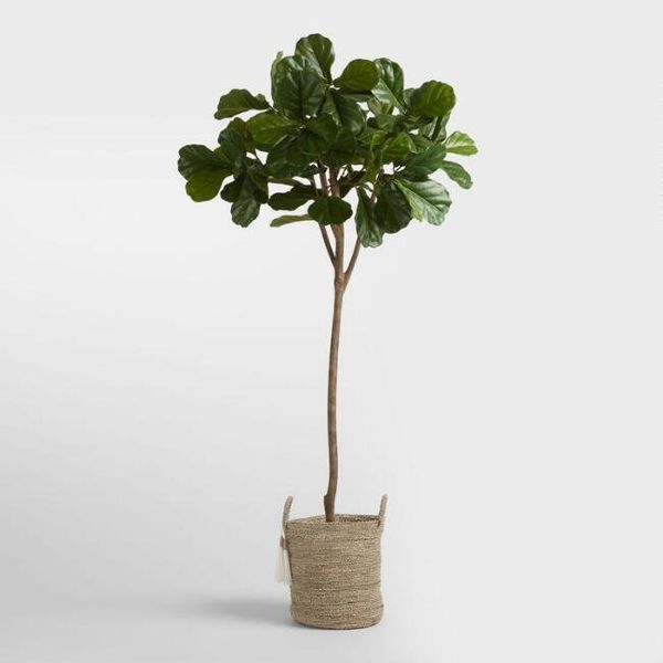 "Get it at<a href=""https://www.worldmarket.com/product/6-foot-faux-fiddle-leaf-fig-tree.do?sortby=ourPicks"" target=""_bla"
