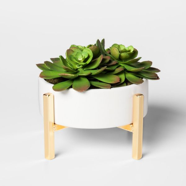 """Get it at <a href=""""https://www.target.com/p/artificial-succulent-in-stand-large-project-62-153/-/A-52414552"""" target=""""_blank"""">"""
