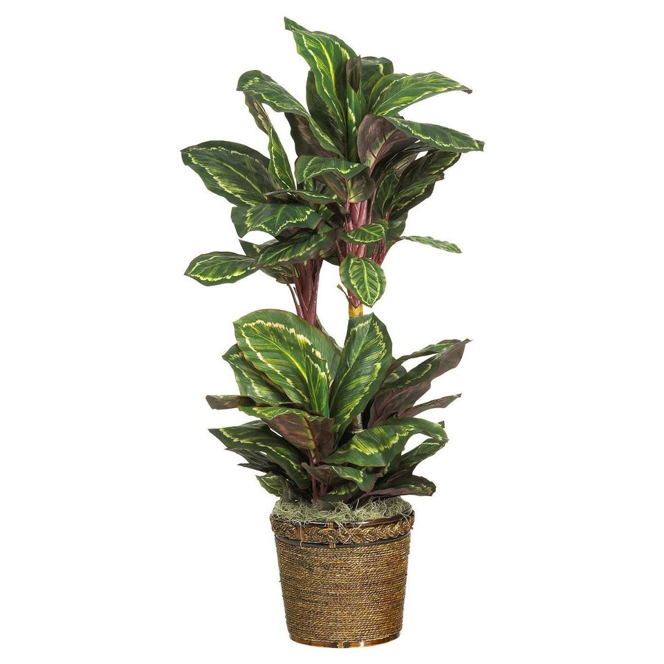18 perfectly fake houseplants that look real huffpost life. Black Bedroom Furniture Sets. Home Design Ideas