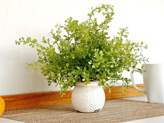 """Get it on <a href=""""https://www.etsy.com/listing/574706912/small-spring-plant-potted-faux-greenery?ga_order=most_relevant&"""