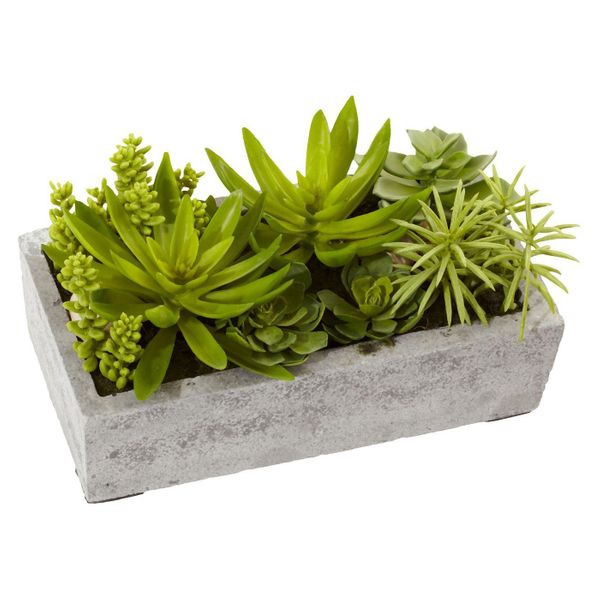 """Get it at <a href=""""https://www.target.com/p/nearly-natural-succulent-garden-with-concrete-planter/-/A-17088076"""" target=""""_blan"""